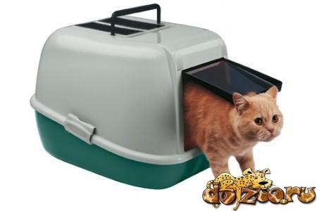 Кот выходит из туалета